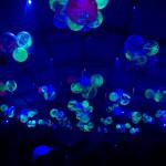 fluoballs, dancehall 2006